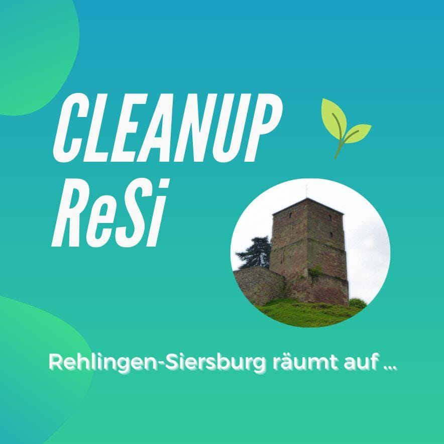 Cleanup ReSi
